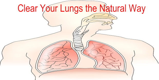 clear lungs natural way